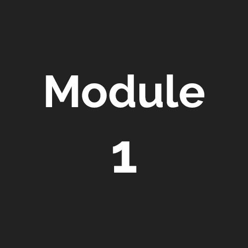 mod-1